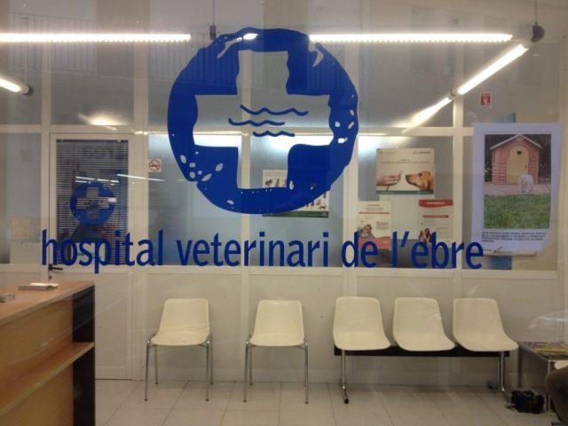 Recepció de l'Hospital Veterinari de l'Ebre
