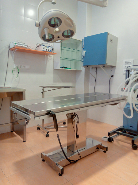 L'Hospital Veterinari de l'Ebre canvia d'ubicació, millorem les instal·lacions, els serveis i l'accessibilitat