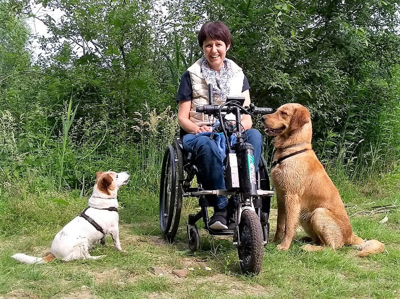 Els gossos col·laboren amb la recuperació de persones malaltes i discapacitades